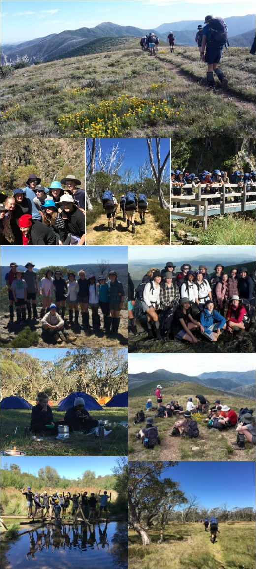 Term 1 2019 -  Bridge Building, Expo 1, and Hike to Mt Feathertop