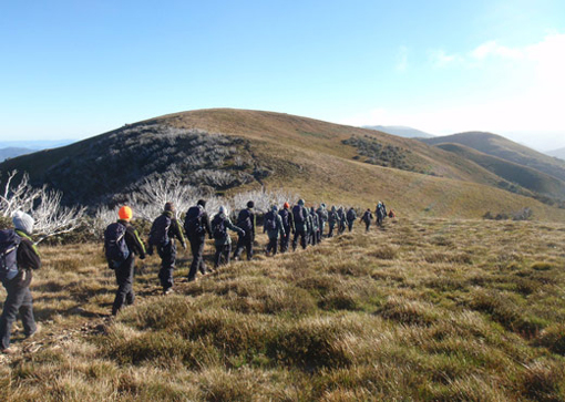 Day Walk to Mt Feathertop