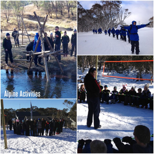 Alpine Activities - Term 3