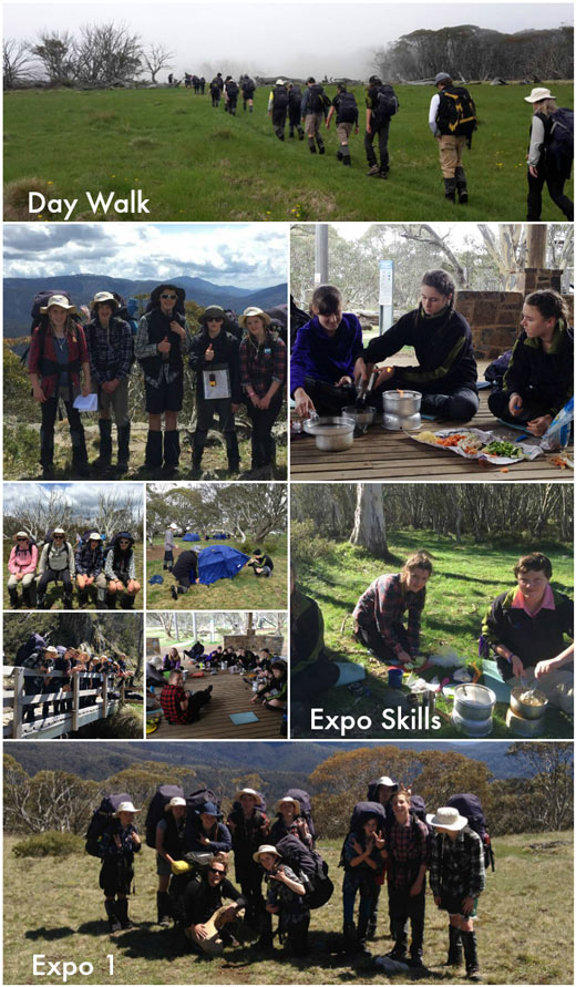 Term 4 Students Exploring the Outdoors